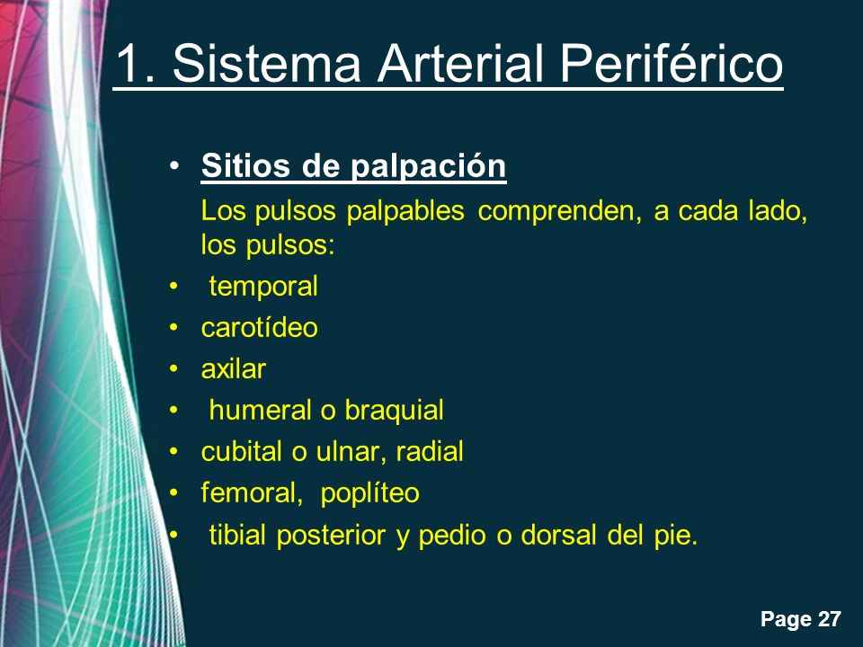 1. Sistema Arterial Periférico