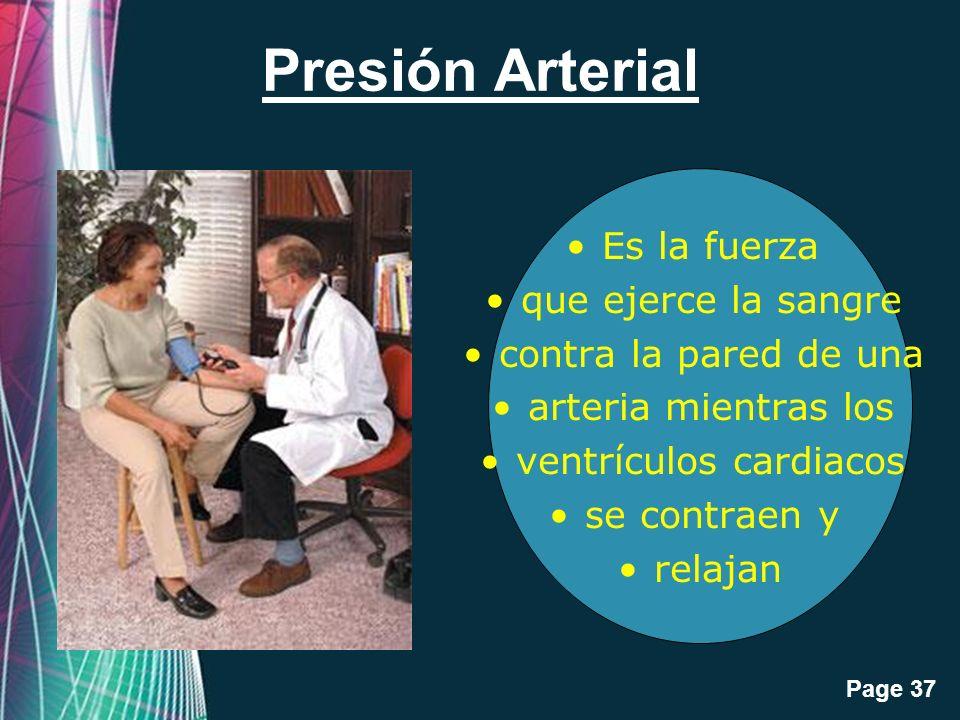 ventrículos cardiacos