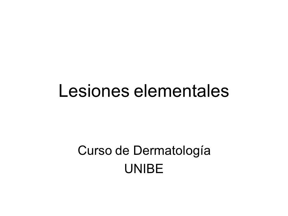 Curso de Dermatología UNIBE