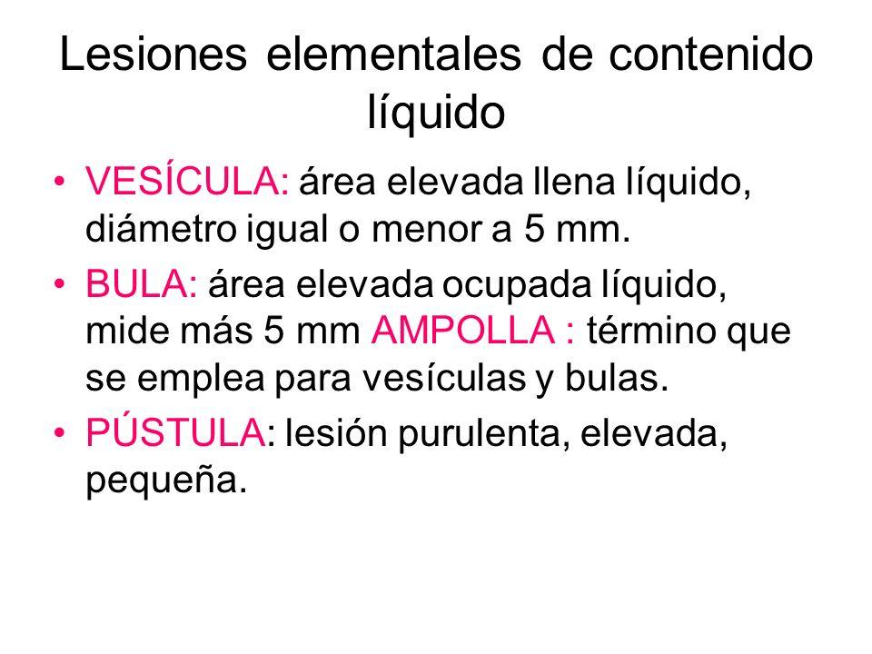 Lesiones elementales de contenido líquido