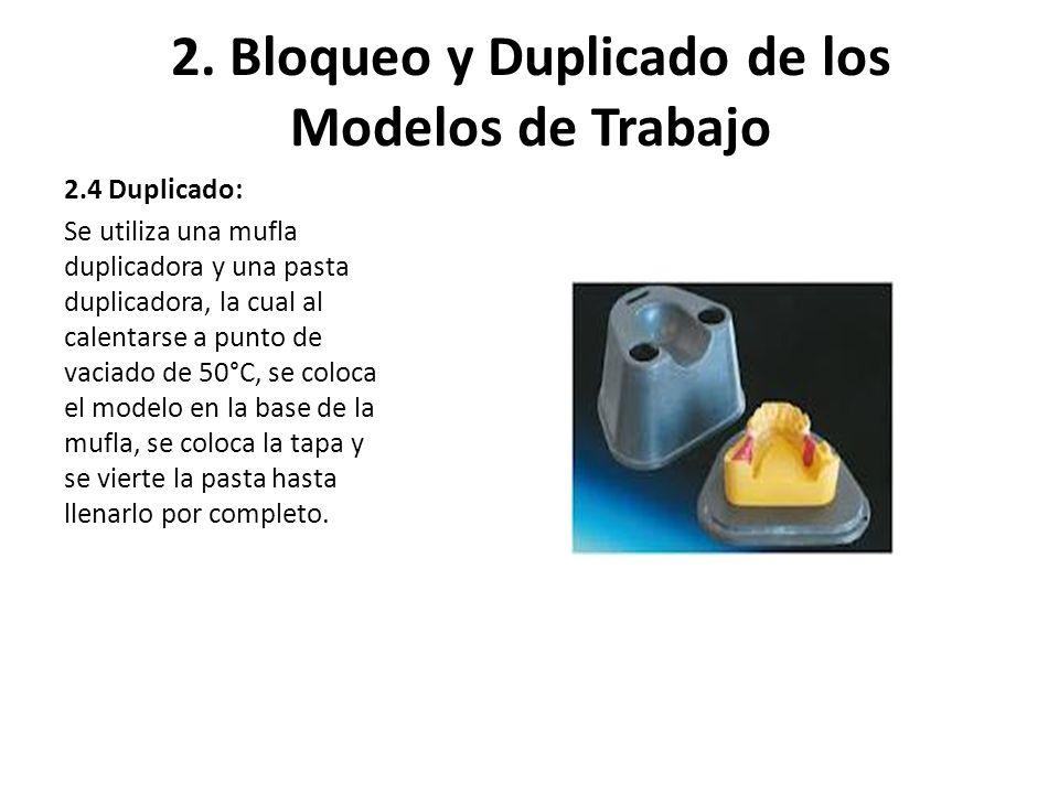2. Bloqueo y Duplicado de los Modelos de Trabajo