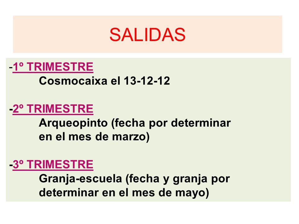 SALIDAS -1º TRIMESTRE Cosmocaixa el 13-12-12 -2º TRIMESTRE