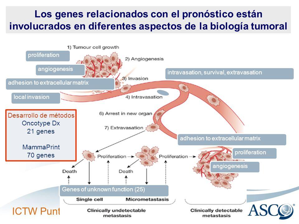 Los genes relacionados con el pronóstico están involucrados en diferentes aspectos de la biología tumoral