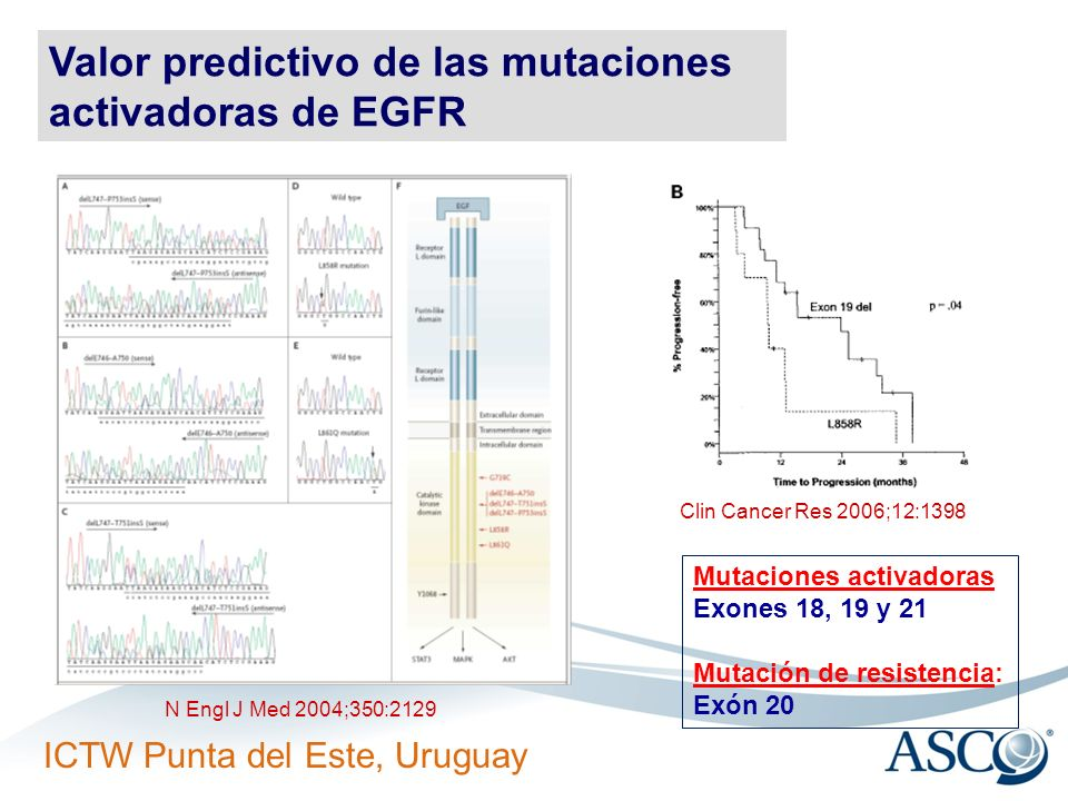 Valor predictivo de las mutaciones activadoras de EGFR