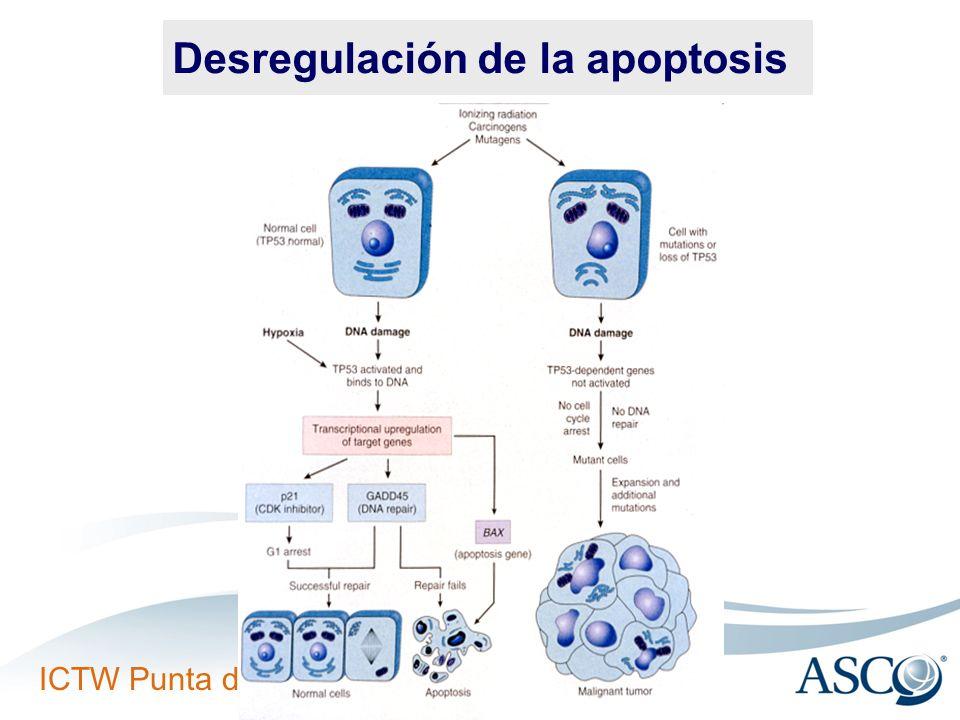 Desregulación de la apoptosis