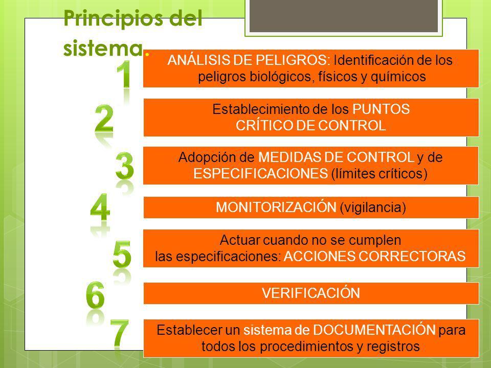 Principios del sistema.
