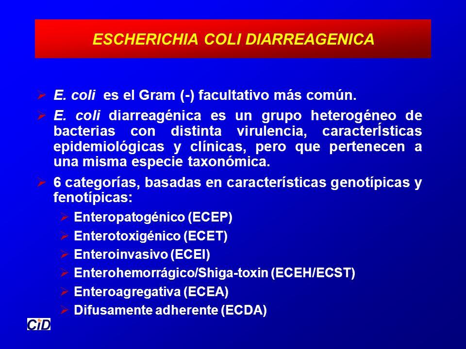 ESCHERICHIA COLI DIARREAGENICA