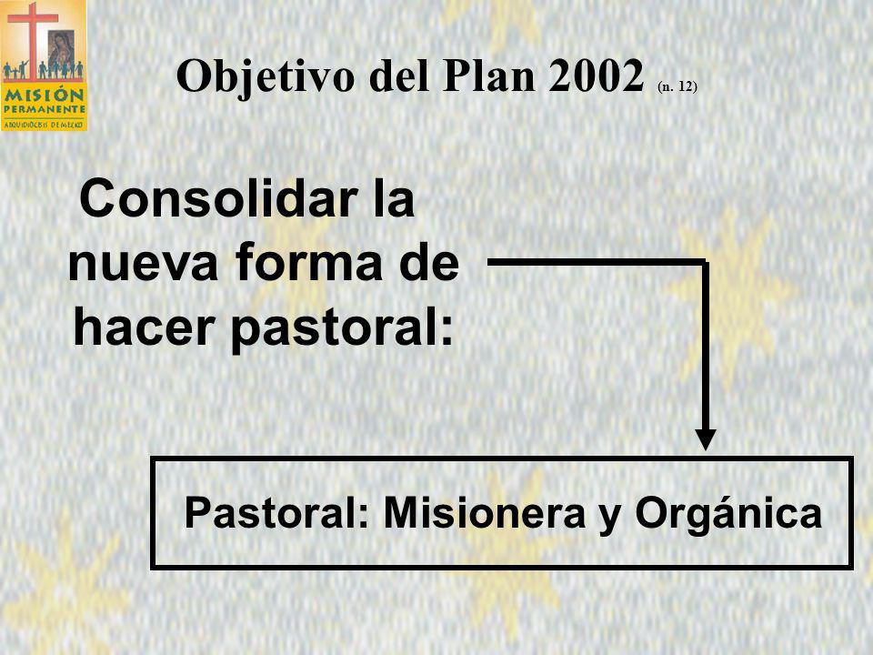 Consolidar la nueva forma de hacer pastoral: