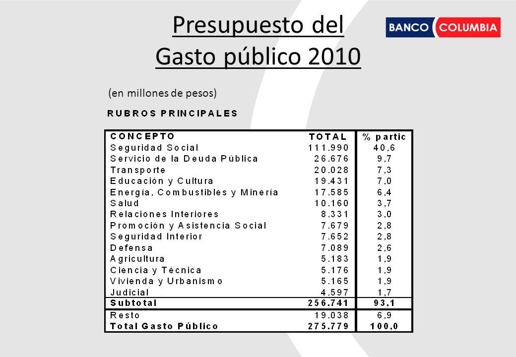 Presupuesto del Gasto público 2010 (en millones de pesos) 19