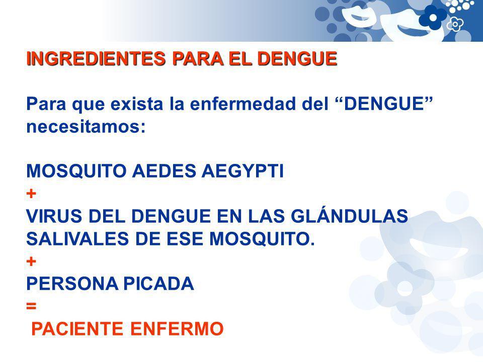 INGREDIENTES PARA EL DENGUE