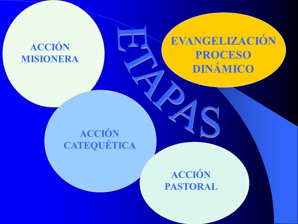 EVANGELIZACIÓNPROCESO DINÁMICO