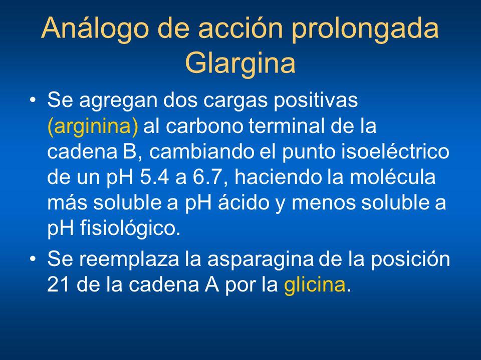 Análogo de acción prolongada Glargina