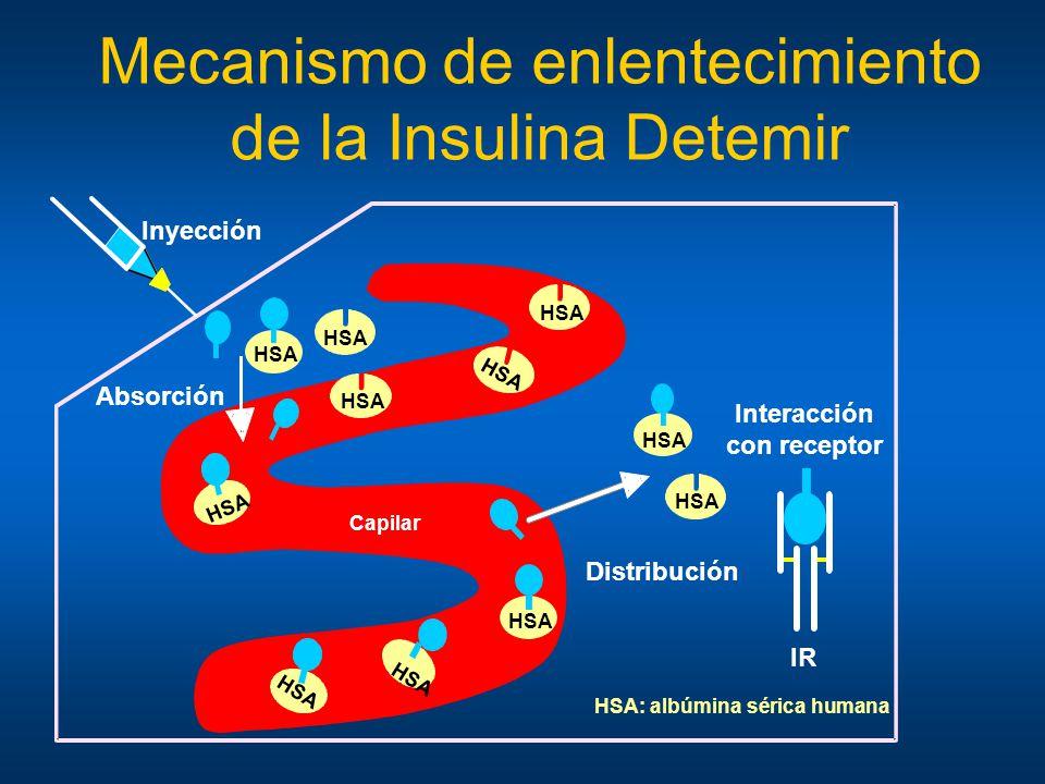Mecanismo de enlentecimiento de la Insulina Detemir