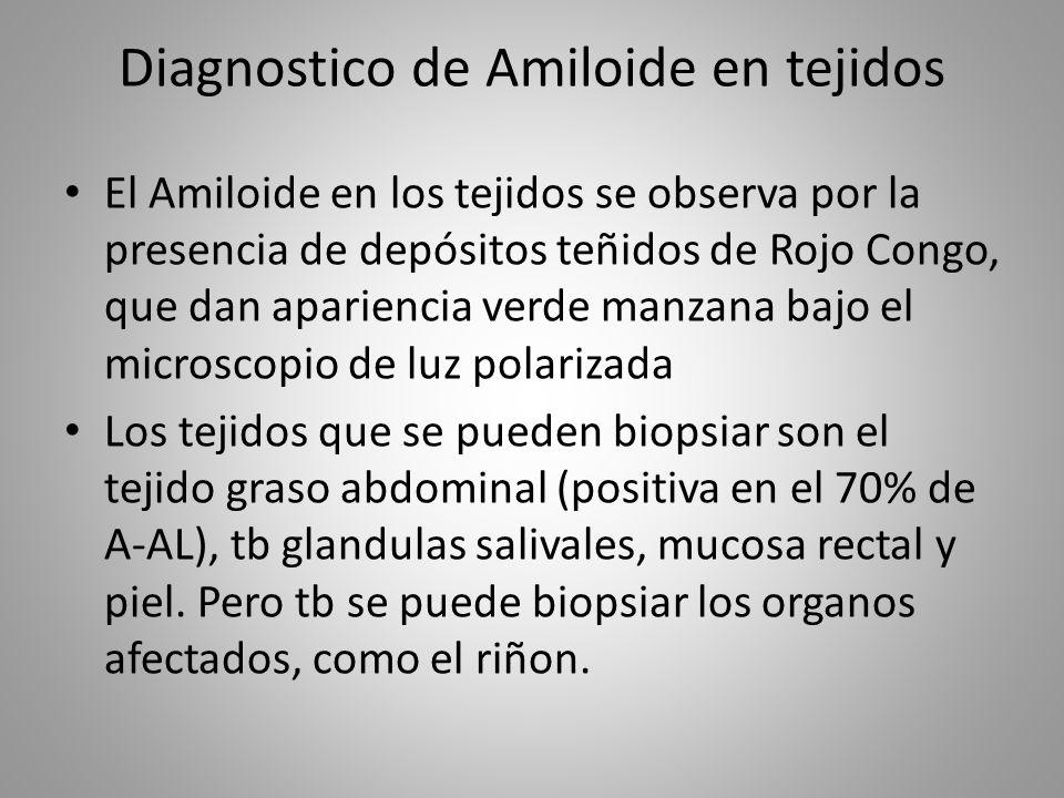 Diagnostico de Amiloide en tejidos