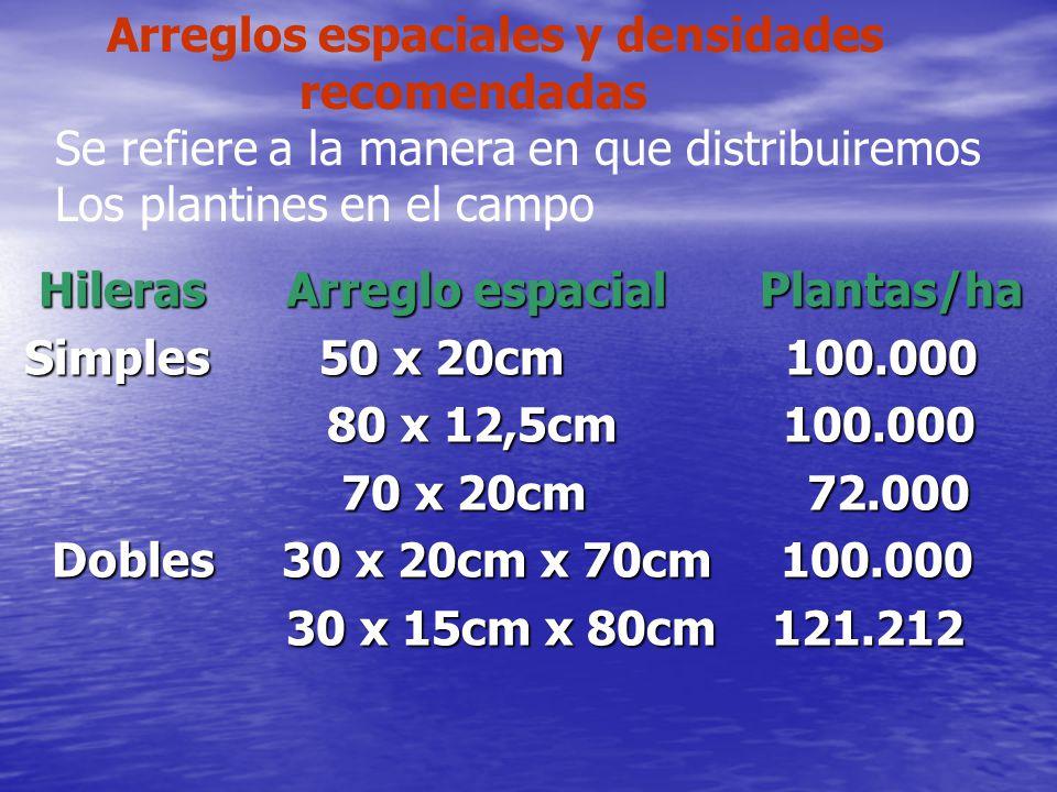 Arreglos espaciales y densidades