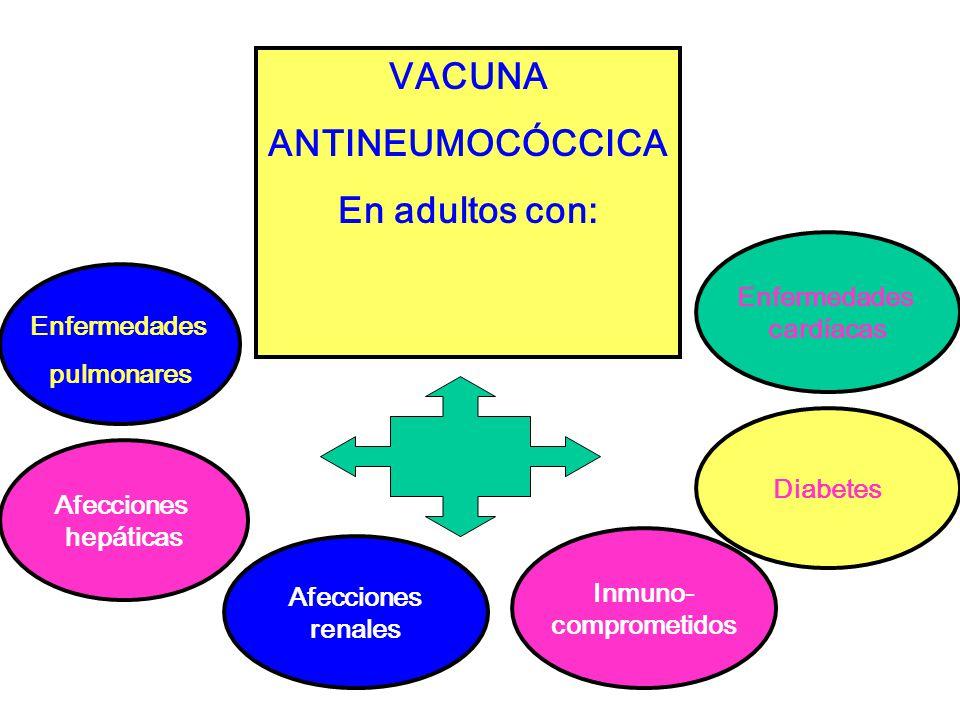 VACUNA ANTINEUMOCÓCCICA En adultos con: