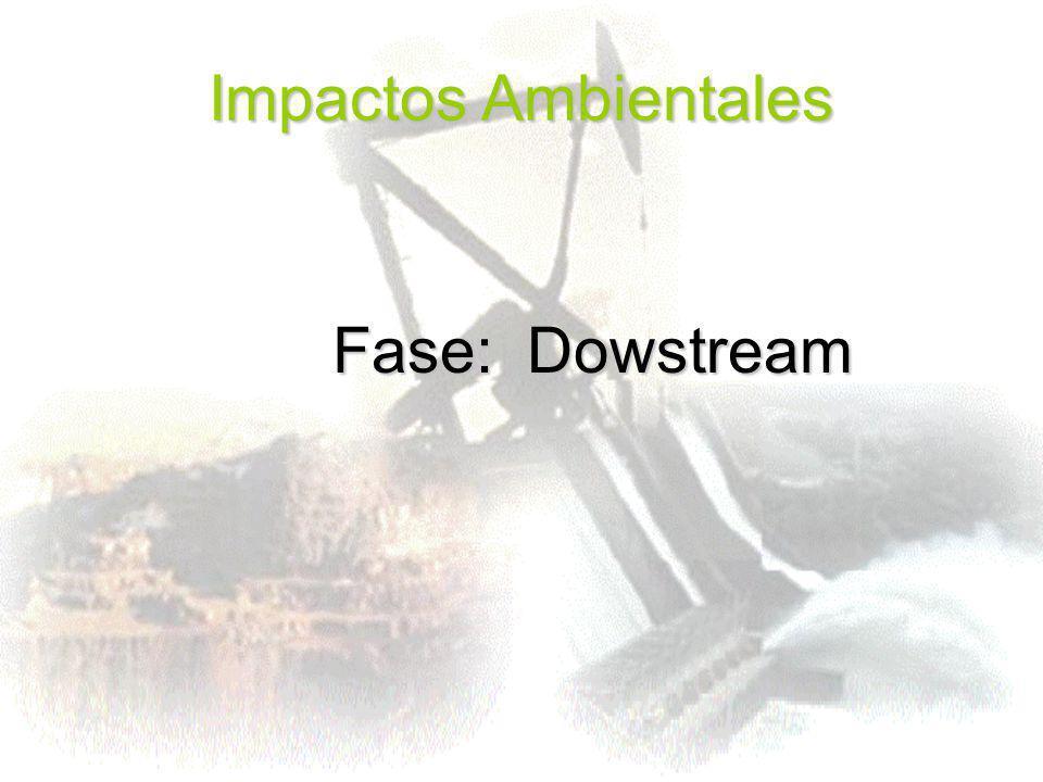 Impactos Ambientales Fase: Dowstream