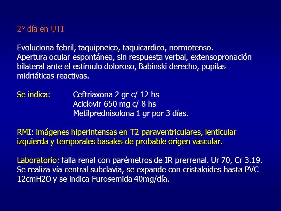 2° día en UTI Evoluciona febril, taquipneico, taquicardico, normotenso