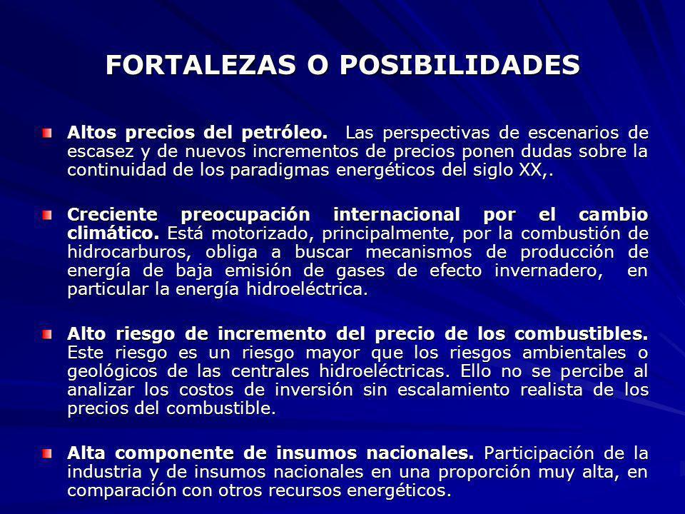 FORTALEZAS O POSIBILIDADES