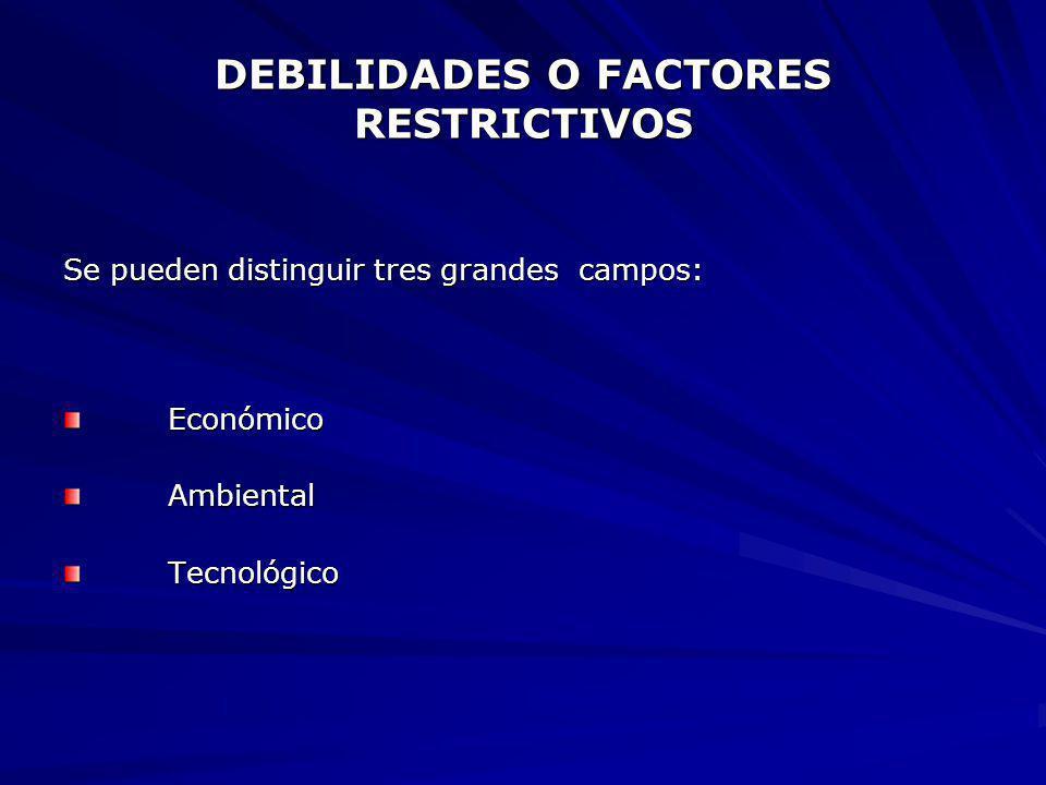 DEBILIDADES O FACTORES RESTRICTIVOS