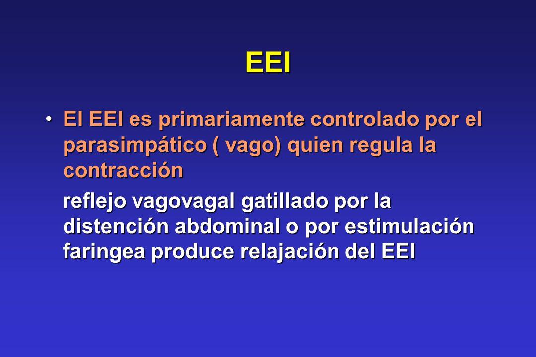 EEI El EEI es primariamente controlado por el parasimpático ( vago) quien regula la contracción.