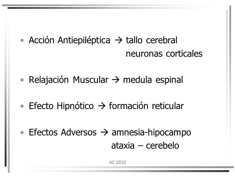 Acción Antiepiléptica  tallo cerebral neuronas corticales