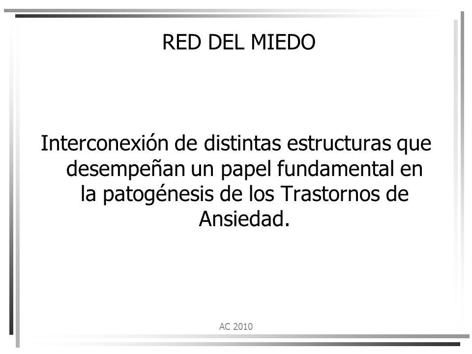 RED DEL MIEDO Interconexión de distintas estructuras que desempeñan un papel fundamental en la patogénesis de los Trastornos de Ansiedad.
