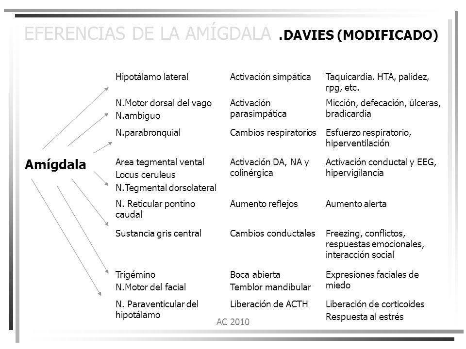 EFERENCIAS DE LA AMÍGDALA .DAVIES (MODIFICADO)