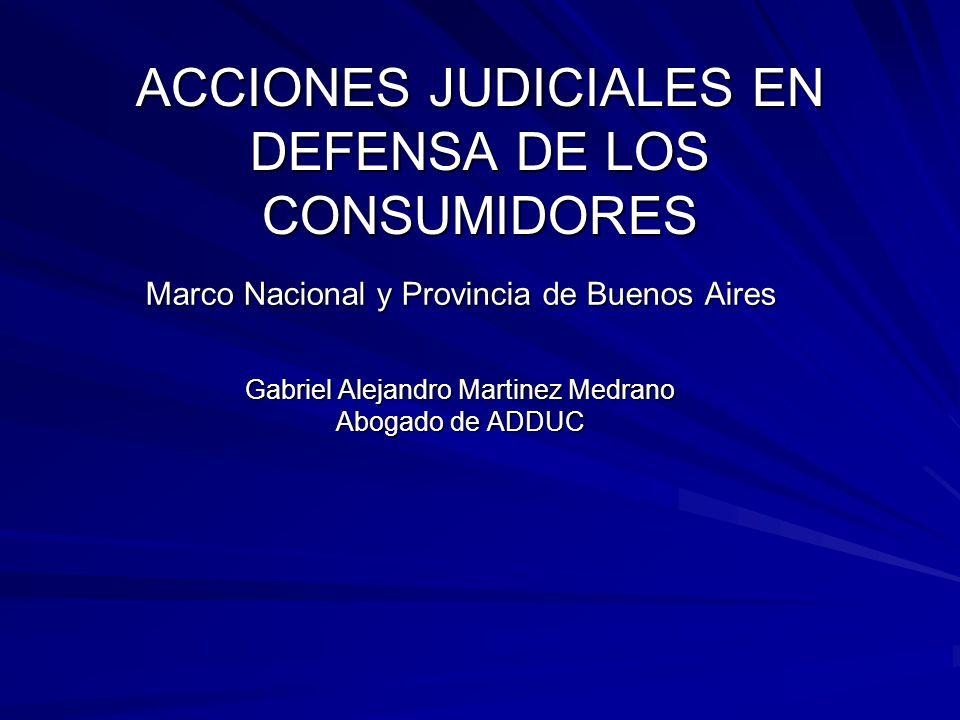 ACCIONES JUDICIALES EN DEFENSA DE LOS CONSUMIDORES