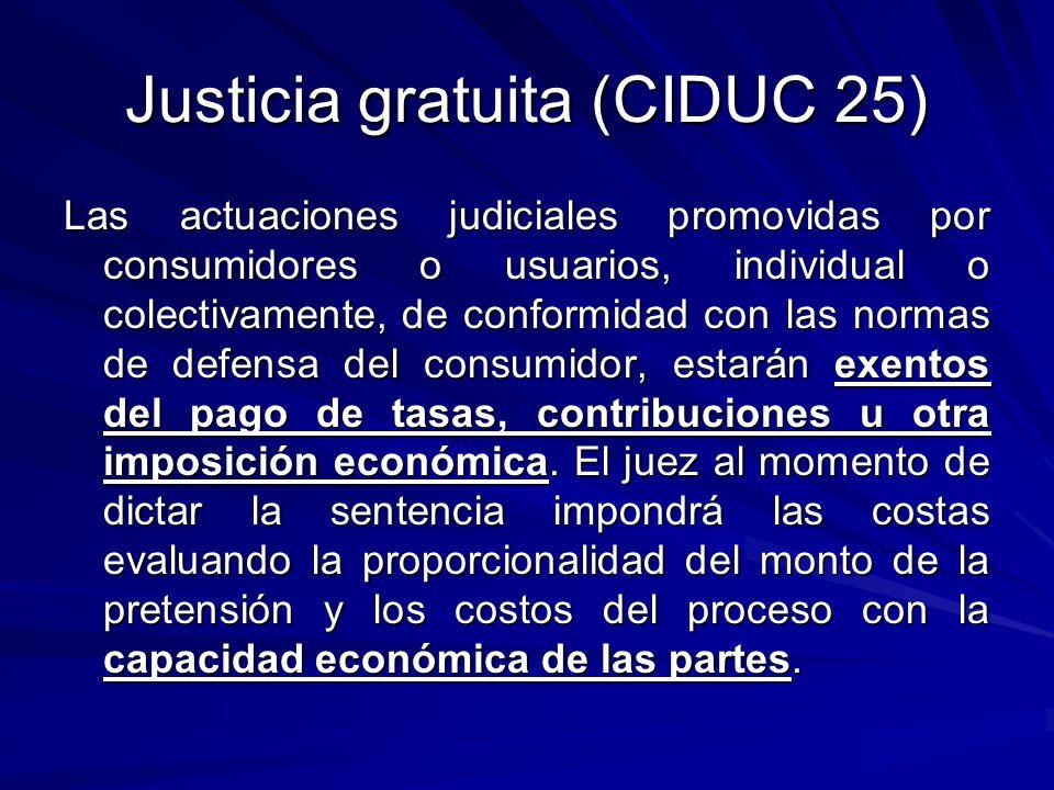Justicia gratuita (CIDUC 25)
