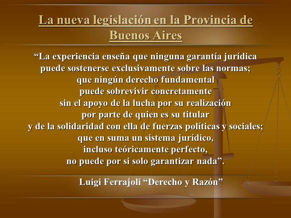 La nueva legislación en la Provincia de Buenos Aires