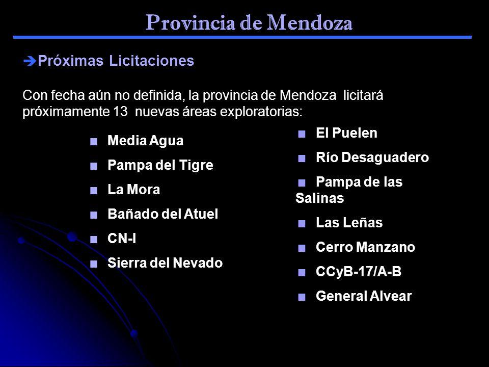 Provincia de Mendoza Próximas Licitaciones