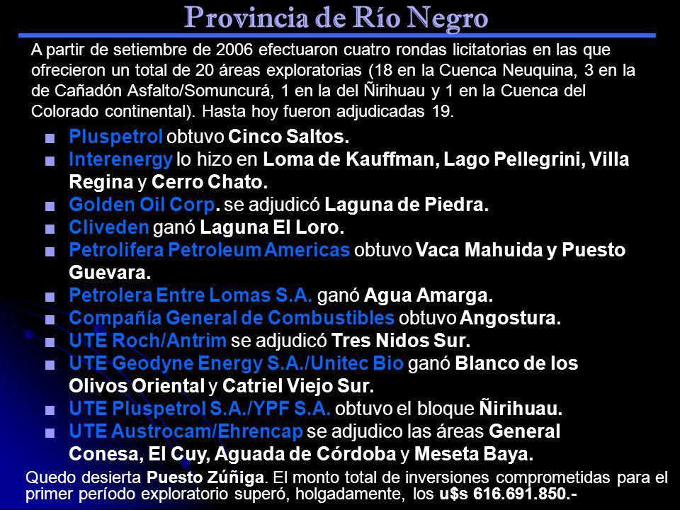 Provincia de Río Negro Pluspetrol obtuvo Cinco Saltos.