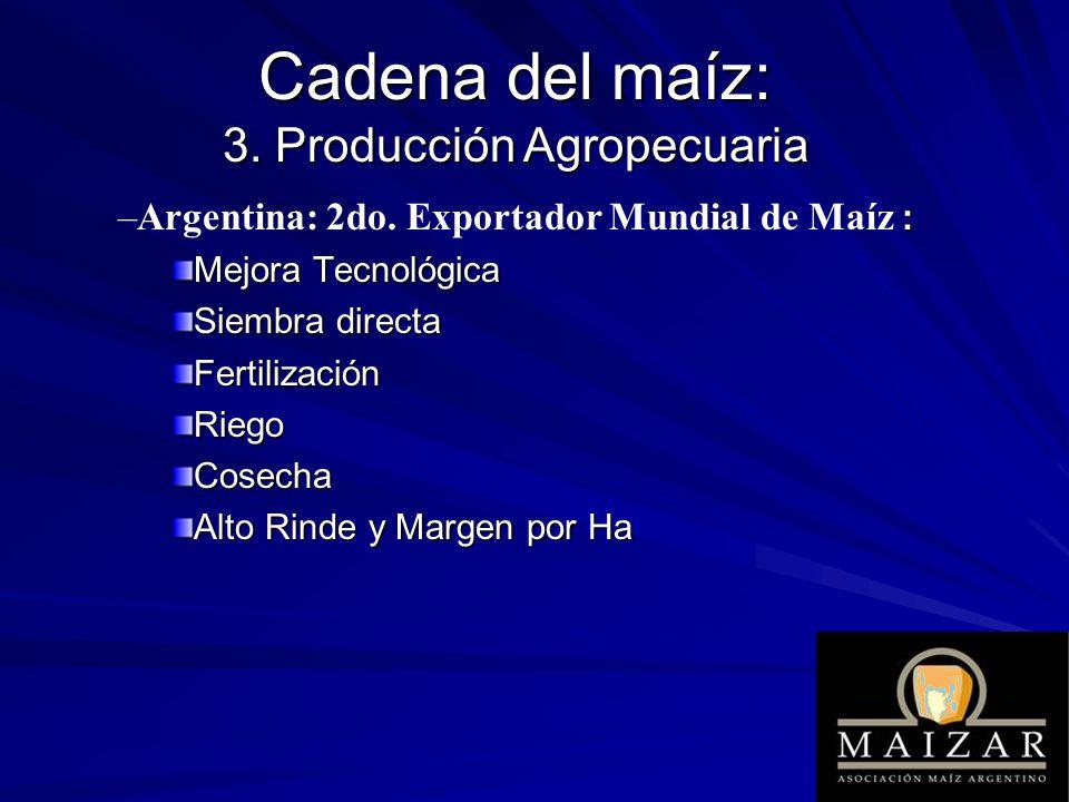 Cadena del maíz: 3. Producción Agropecuaria