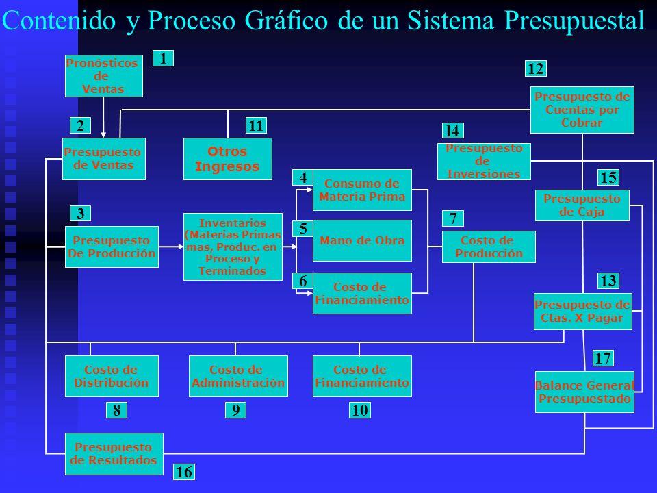 Contenido y Proceso Gráfico de un Sistema Presupuestal