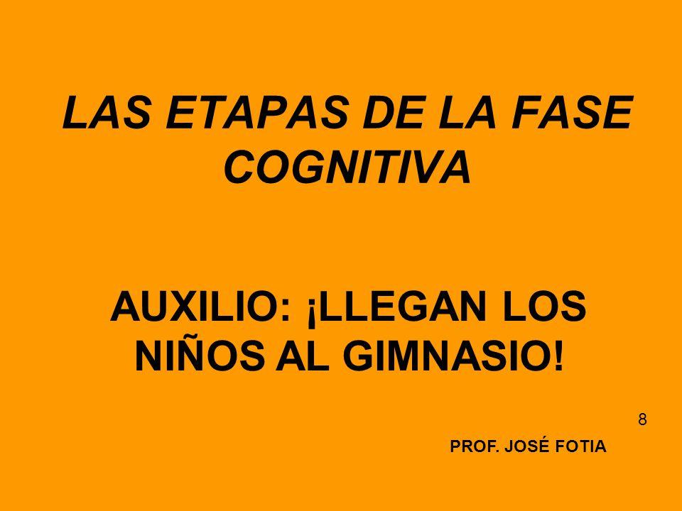 LAS ETAPAS DE LA FASE COGNITIVA