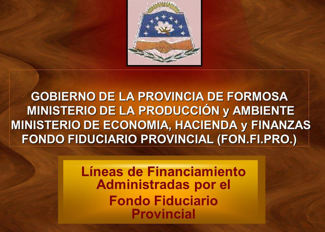 GOBIERNO DE LA PROVINCIA DE FORMOSA MINISTERIO DE LA PRODUCCIÓN y AMBIENTE MINISTERIO DE ECONOMIA, HACIENDA y FINANZAS FONDO FIDUCIARIO PROVINCIAL (FON.FI.PRO.)