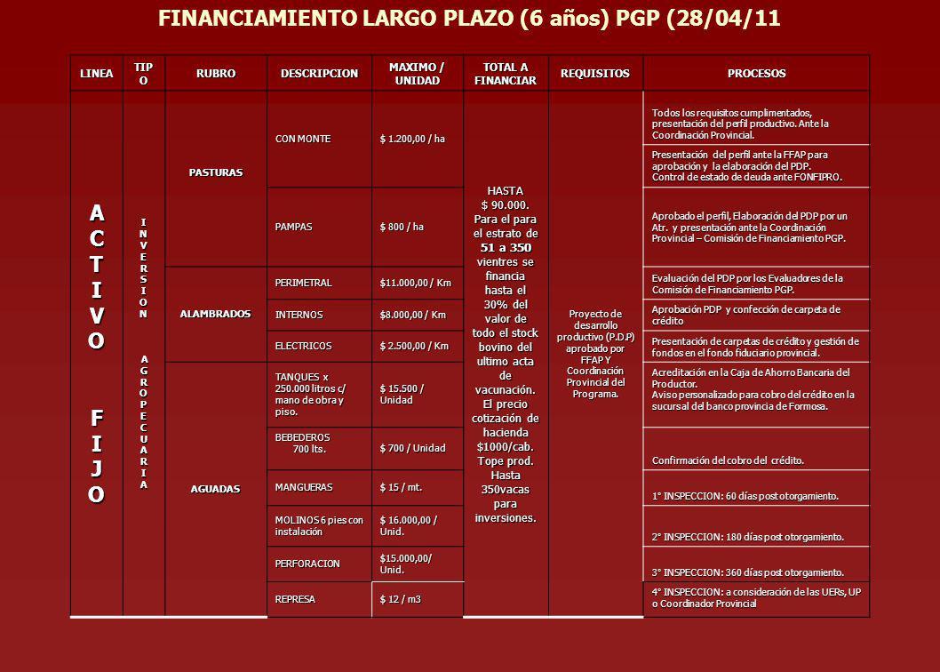 FINANCIAMIENTO LARGO PLAZO (6 años) PGP (28/04/11 A C T I V O