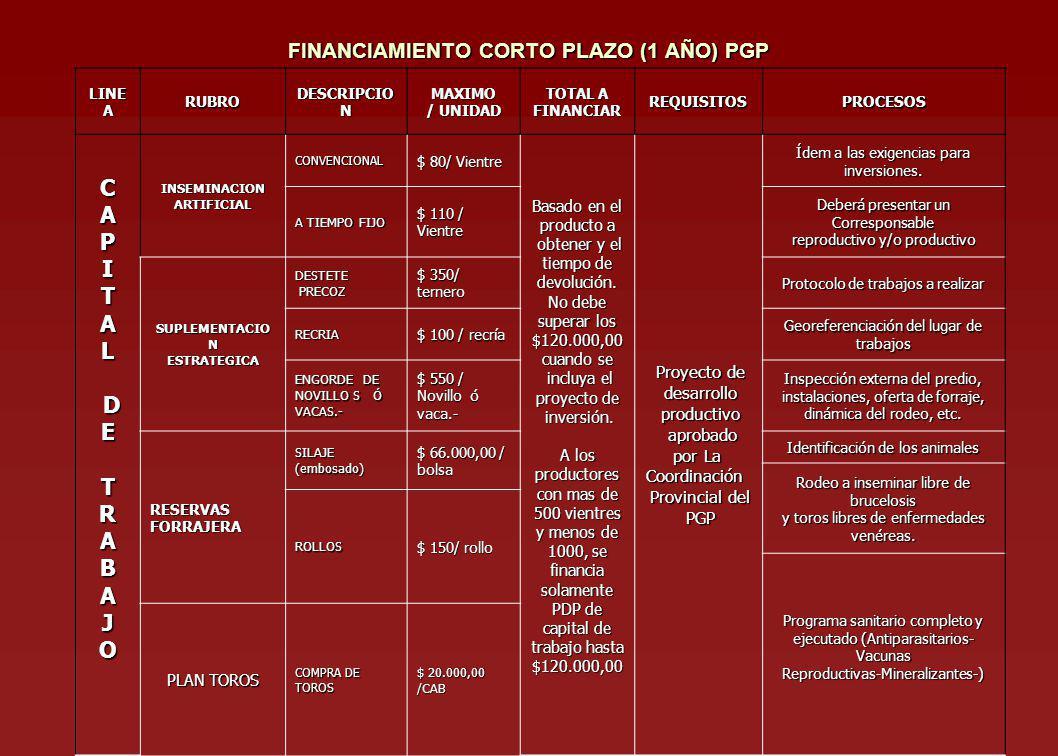 FINANCIAMIENTO CORTO PLAZO (1 AÑO) PGP