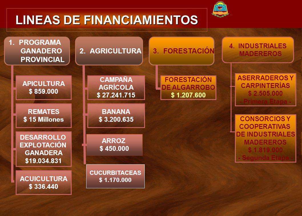 LINEAS DE FINANCIAMIENTOS