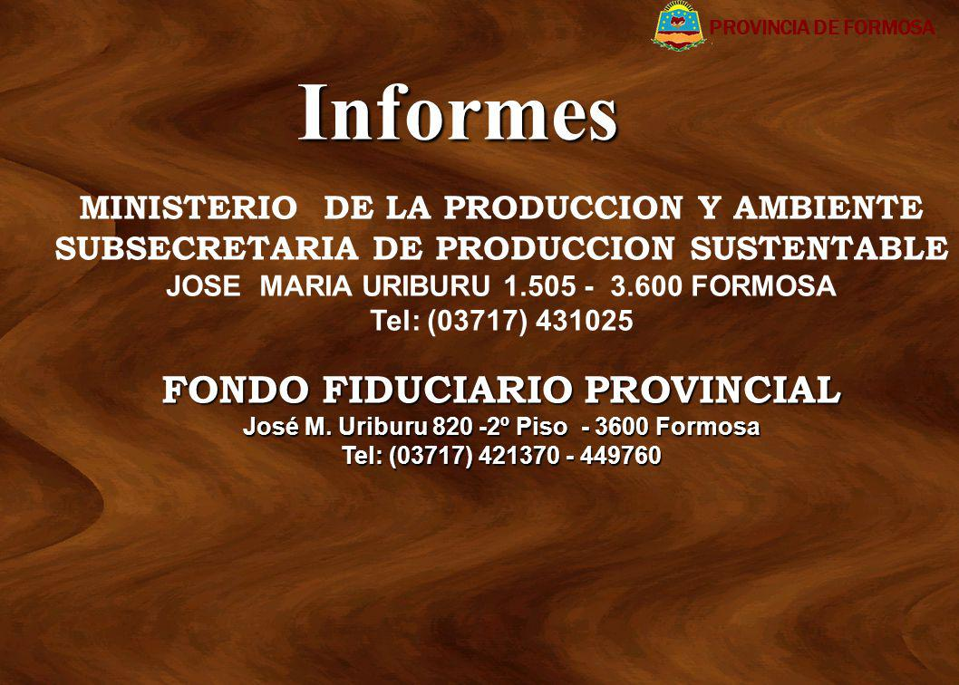 Informes FONDO FIDUCIARIO PROVINCIAL