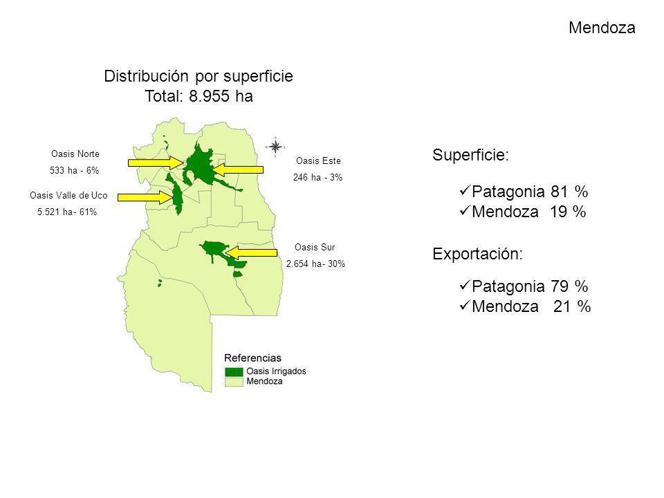 Distribución por superficie Total: 8.955 ha