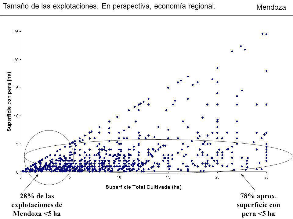 Tamaño de las explotaciones. En perspectiva, economía regional.