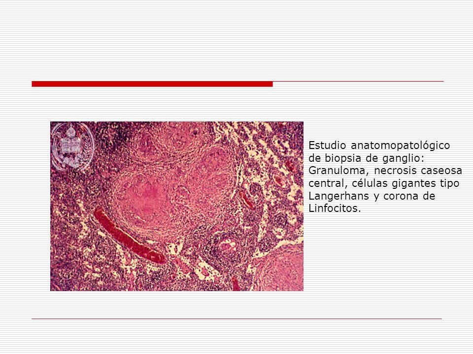 Estudio anatomopatológico
