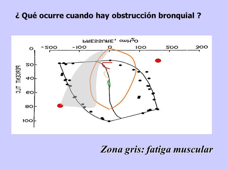 Zona gris: fatiga muscular