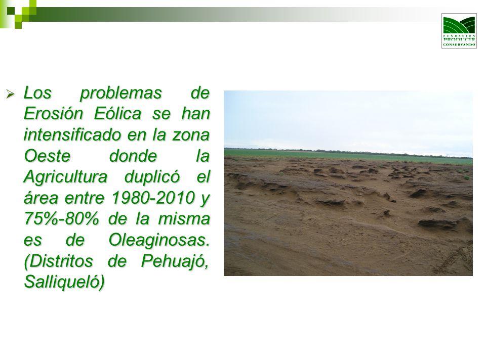 Los problemas de Erosión Eólica se han intensificado en la zona Oeste donde la Agricultura duplicó el área entre 1980-2010 y 75%-80% de la misma es de Oleaginosas.