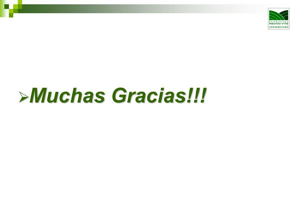 Muchas Gracias!!!