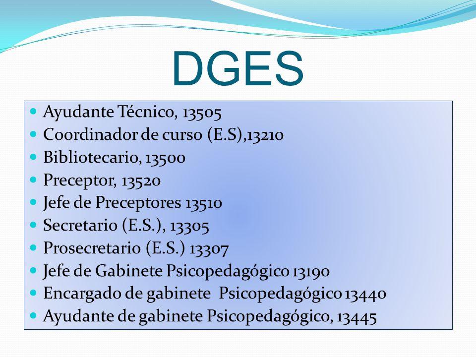 DGES Ayudante Técnico, 13505 Coordinador de curso (E.S),13210