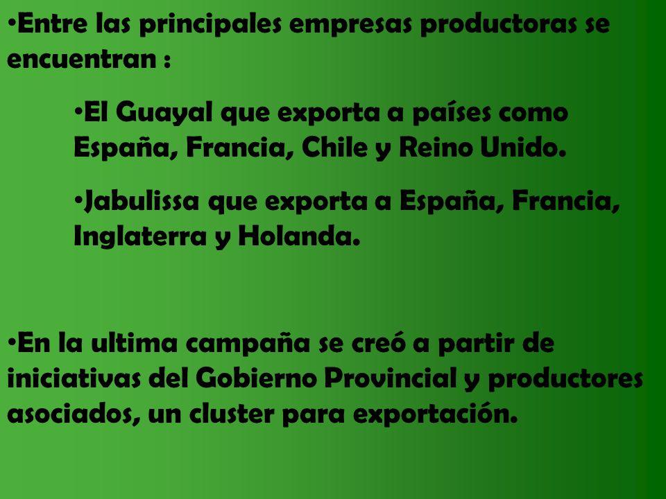 Entre las principales empresas productoras se encuentran :