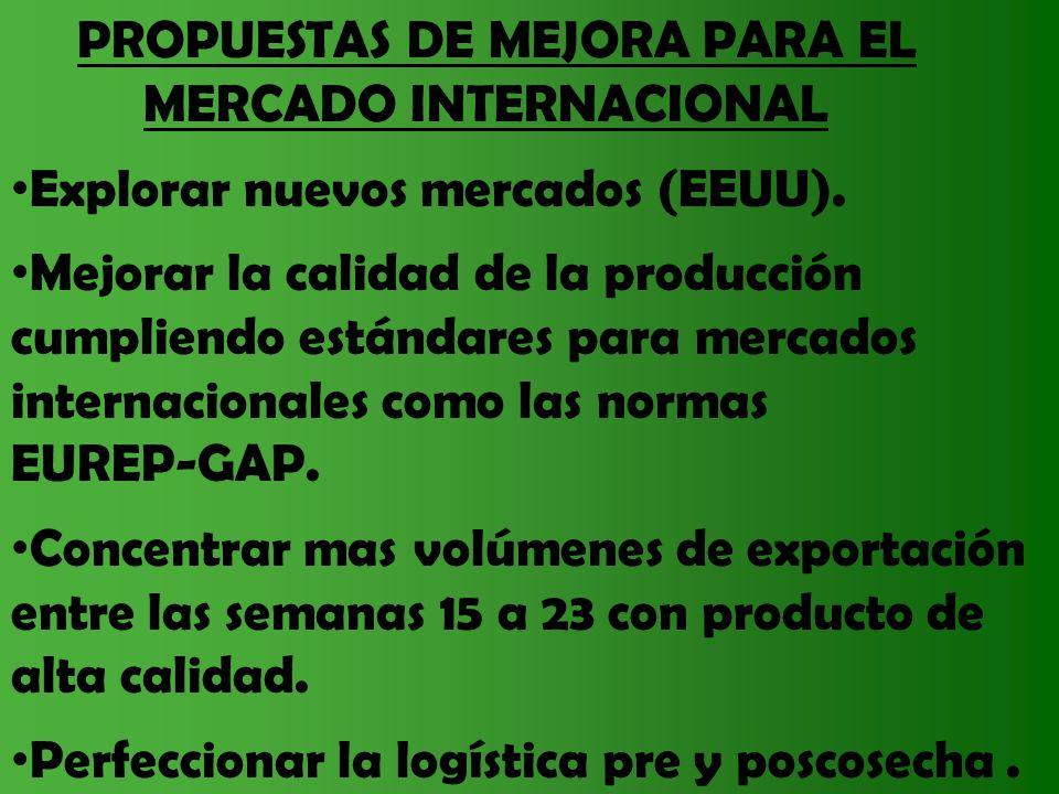 MERCADO INTERNACIONAL Explorar nuevos mercados (EEUU).